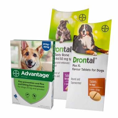 12 Month Flea & Worm Treatment For Dogs – Advantage & Drontal
