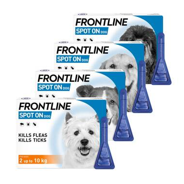 Frontline Flea Treatment Spot On for Dogs