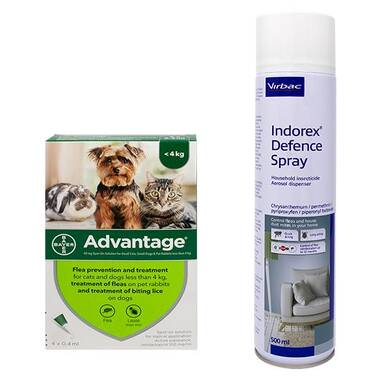 Advantage Spot On Flea Treatment and Indorex Flea Spray